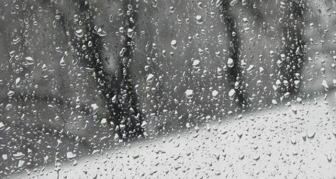 Погода в Луганске на завтра, 11февраля: дождь