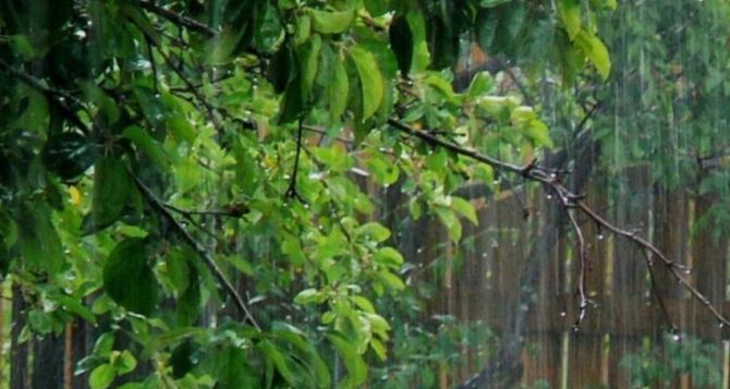 Погода в Луганске на завтра, 14июня