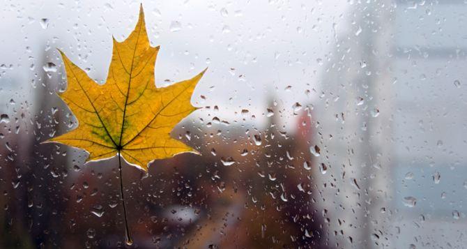 В Украине ожидаются сильные дожди и усиление ветра