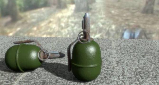 Пограничники задержали в районе Станицы Луганской мужчину с гранатой