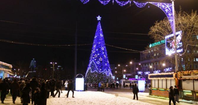 В Донецке приступили к монтажу главной городской елки
