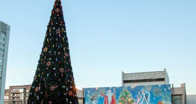 В Луганске зажгла свои огни главная новогодняя елка города (фото)