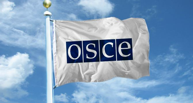 Замглавы миссии ОБСЕ посетит восток Украины