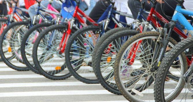В Донецке состоится традиционный велопробег