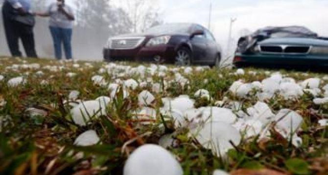 В Харьковской области градом сильно побило посевы и огороды