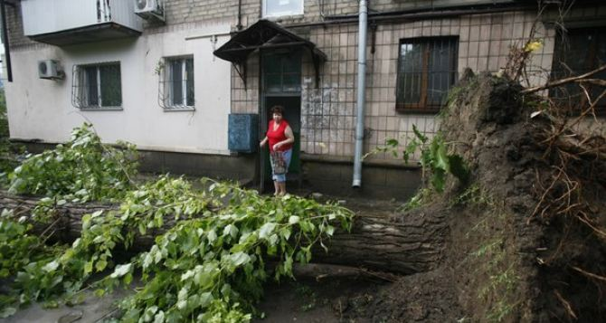 Ураган в Луганске (фото)