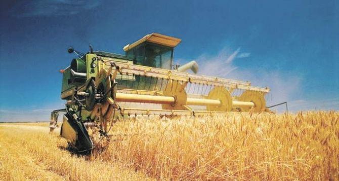 В Луганск доставили зерно нового урожая (видео)