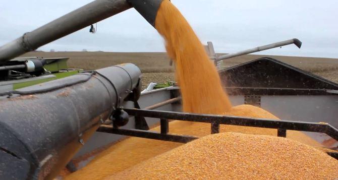 В Харьковской области создан региональный фонд зерна