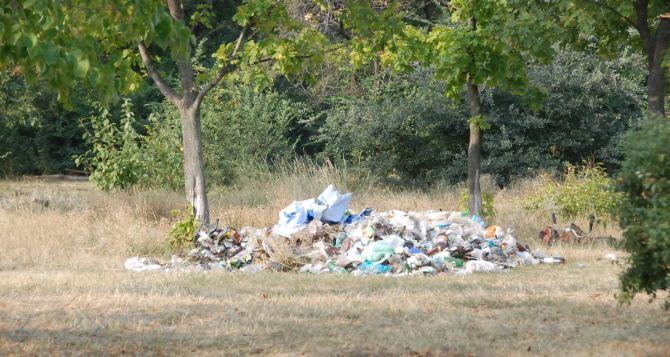 В луганском парке «Дружба» ликвидировали стихийную свалку