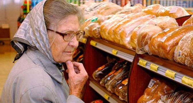 В Харьковской области хлеб не подорожает  до лета следующего года. —ХОГА