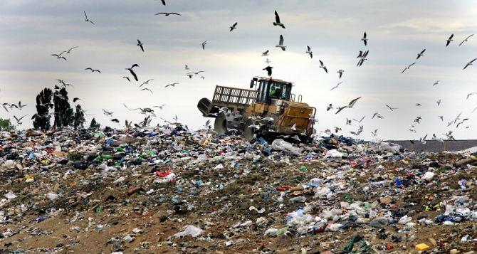 Жителей Луганска призывают поддерживать чистоту и не создавать свалки