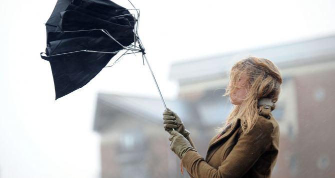 В Луганске ожидается сильный ветер и мокрый снег