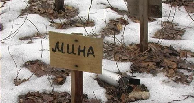 В Краснодонском районе обнаружили 2 боеприпаса «Смерча» (фото)