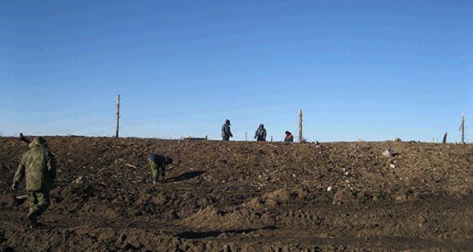 В Сватово началось разминирование территории сгоревших военных складов (фото)