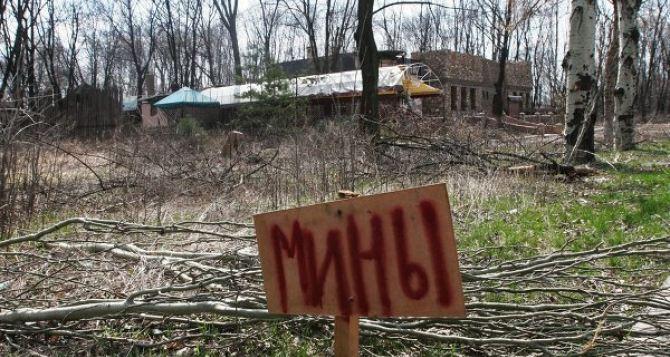 На разминирование Донбасса уйдет 10 лет.  - Минобороны