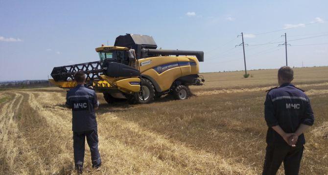 В самопровозглашенной ЛНР приступили к весенне-полевым работам