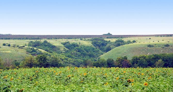 В Луганской области продолжаются весенне-полевые работы