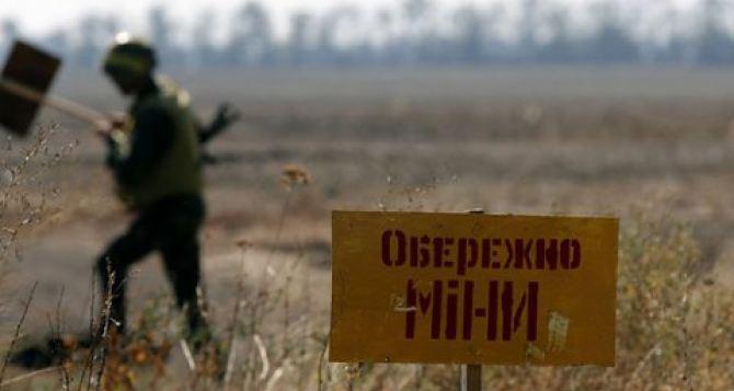 В Донецкой области проводят работу по разминированию кладбищ