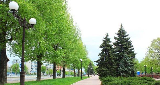 Погода в Луганске на выходные: без существенных осадков