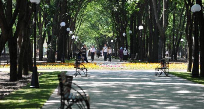 Сад Шевченко в Харькове ждет масштабная реконструкция