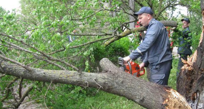 В Харькове ликвидируют последствия урагана