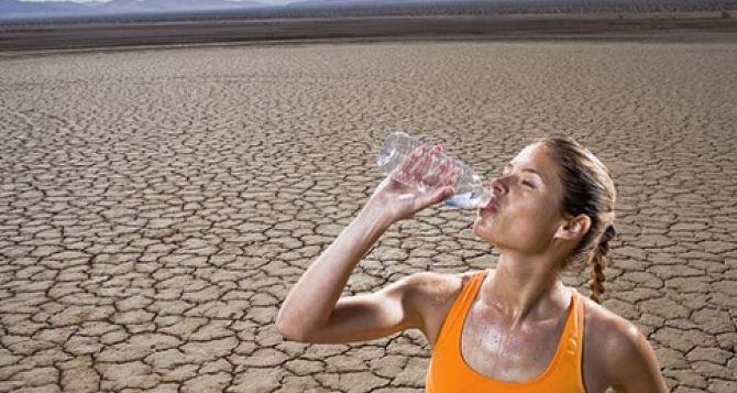 Пить больше воды и меньше алкоголя. —Советы врачей в жару