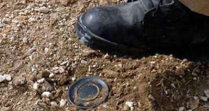 В Луганской области на мине подорвались двое военнослужащих