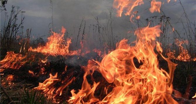 В самопровозглашенной ЛНР за сутки произошло 9 пожаров