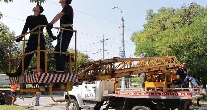 В Луганске полностью ликвидировали последствия урагана