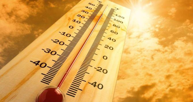 В Луганске на выходных будет +40°С