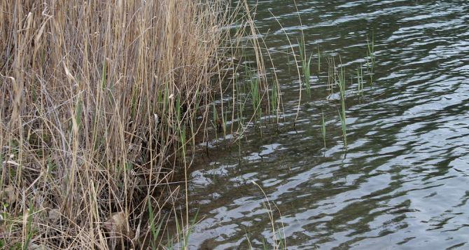 В Краснодонском карьере утонул 19-летний парень