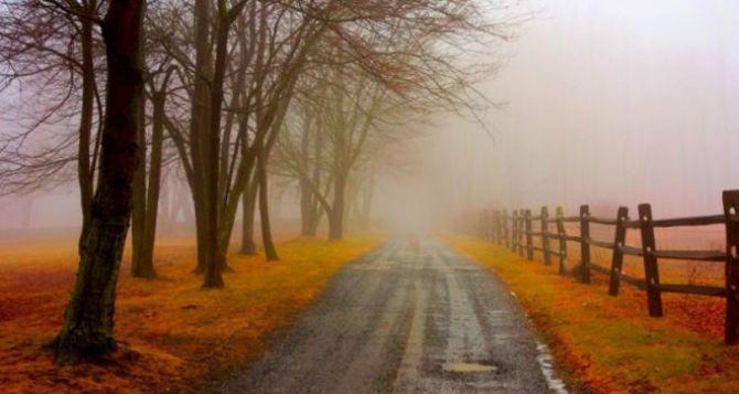 Осень придет строго по расписанию. —Синоптики
