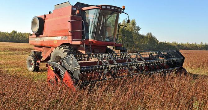 В Луганской области идет сбор поздних сельскохозяйственных культур