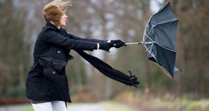 Синоптики предупреждают о сильном ветре в Луганской области