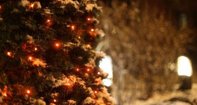 Декабрь будет теплее ноября. Прогноз синоптиков на зиму