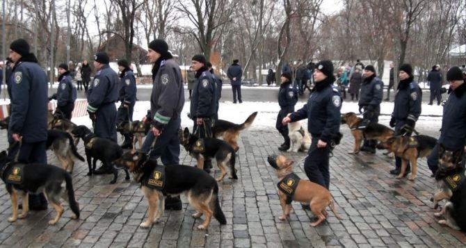 В Харькове усиливают патрулирование