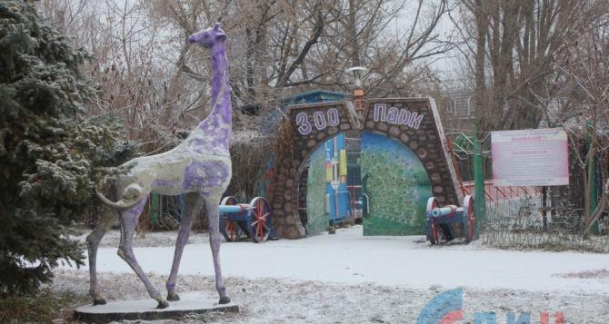 В зоопарке Луганска готовятся к зиме (фото)