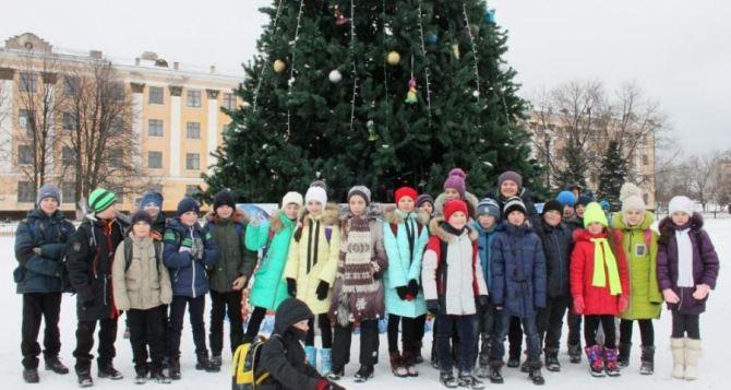 В Лисичанске открыли главную городскую новогоднюю елку (фото)