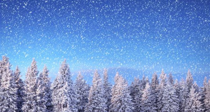 Ученый посчитал снежинки