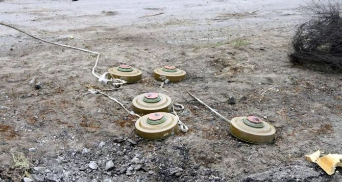 На Донбассе ребенок подорвался на мине