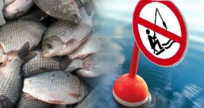 С 1апреля начнет действовать запрет на ловлю рыбы