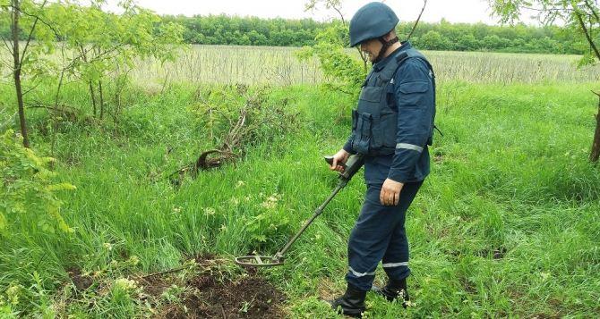 В Луганской области за сутки обнаружено 38 взрывоопасных предметов