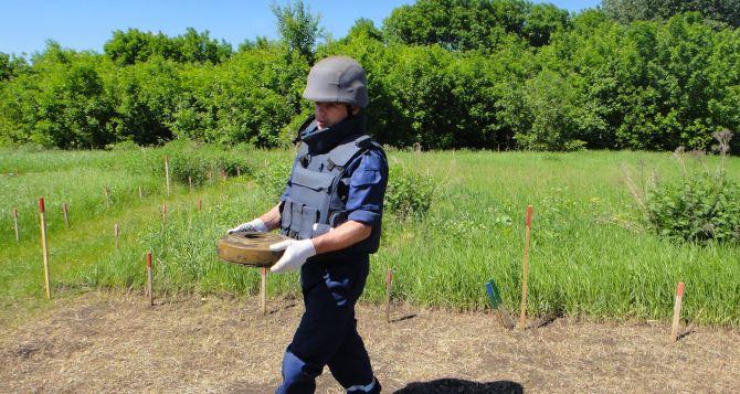 В Луганской области за сутки обнаружено 146 взрывоопасных предметов