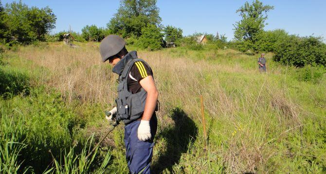 В Луганской области за неделю обнаружили 544 взрывоопасных предмета