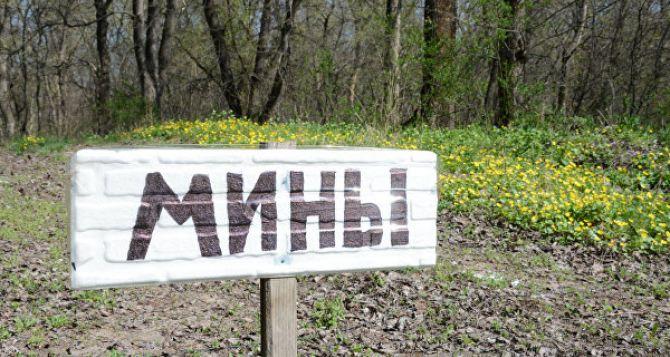 ОБСЕ призывает стороны конфликта на Донбассе передать карты минных полей