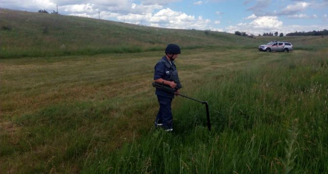 В Луганской области за сутки обнаружили 65 взрывоопасных предметов