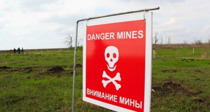 За сутки 60 взрывоопасных предметов. Разминирование Луганской области