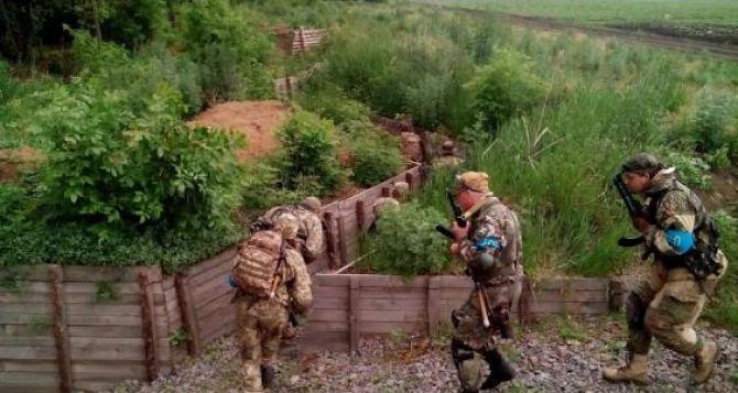 Под Харьковом проходят масштабные военные учения (фото)