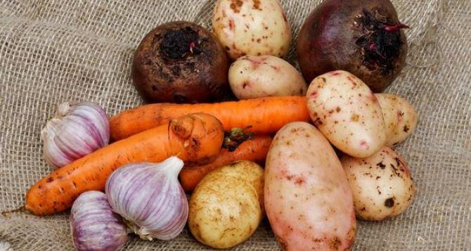 Цены на основные продукты питания в Луганской области