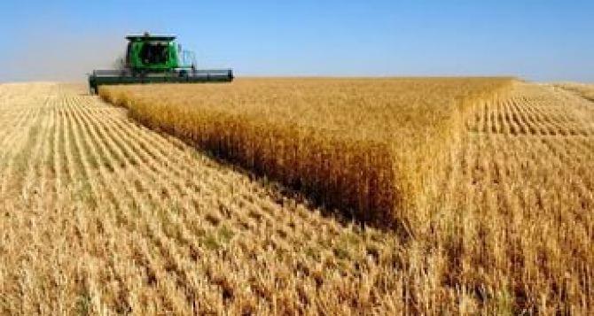 В самопровозглашенной ЛНР планируют завершить уборку ранних зерновых через 18 дней